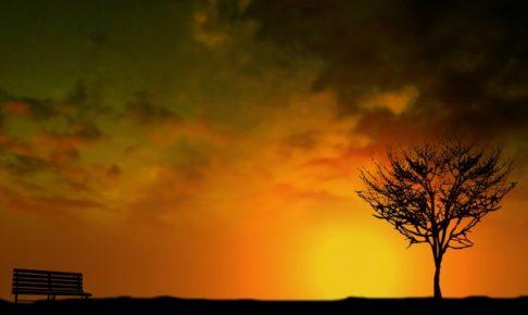 evening-sunlightt